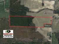 56.35 Acres of Farm And Timber Lan : Fountain : Edgecombe County : North Carolina