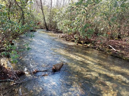 42.01+/- Acres Come Ride Your Atv's : Palmer : Marion County : Tennessee