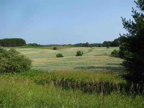 Versitile Acreage Hunt & Till : Paris : Newaygo County : Michigan