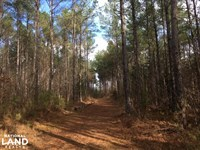 Tomnolen Tract in Webster County : Eupora : Webster County : Mississippi