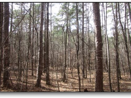 33 Acres In Choctaw County : Ackerman : Choctaw County : Mississippi
