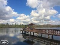Powderkegg High Fence Preserve With : Cassatt : Kershaw County : South Carolina