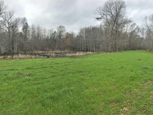 Millsap Tract : Brent : Bibb County : Alabama