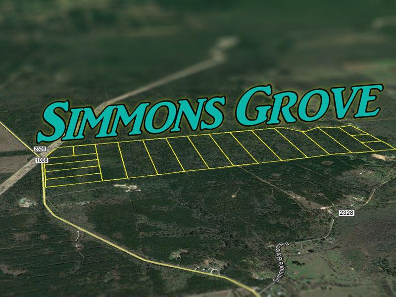 13.439 Ac Simmons Grove Tr 3 : Dayton : Liberty County : Texas