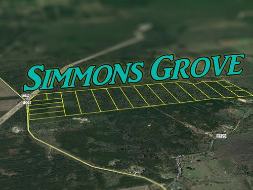 38.568 Ac Simmons Grove Tr 9 : Dayton : Liberty County : Texas