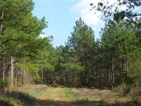Fair Play Tract : Fair Play : Oconee County : South Carolina