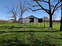 92+/- Ac Cattle Farm : Wadley : Clay County : Alabama