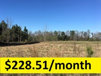 Ample Acreage In Excellent Location : Swainsboro : Emanuel County : Georgia