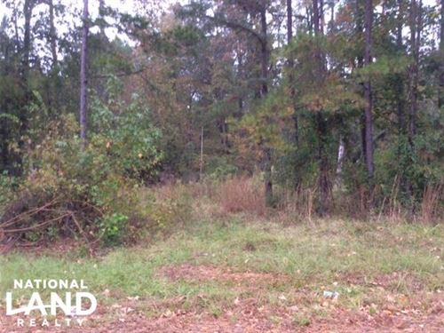 221 Acre Carroll County Hunting : Carrollton : Carroll County : Mississippi