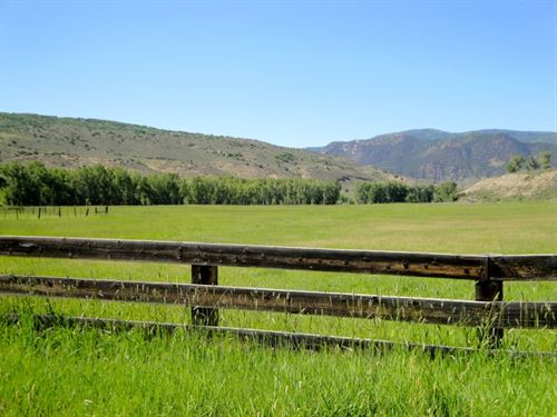 Gray Ranches : Montrose : Colorado