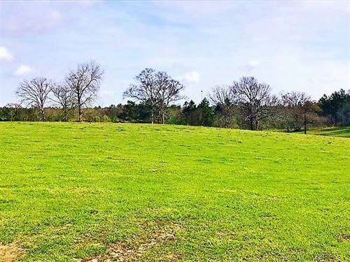26 Acres Of Prime Development Land : Purvis : Lamar County : Mississippi