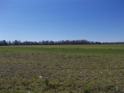 Great Multi-Use Property Elmore Co : Holtville : Elmore County : Alabama