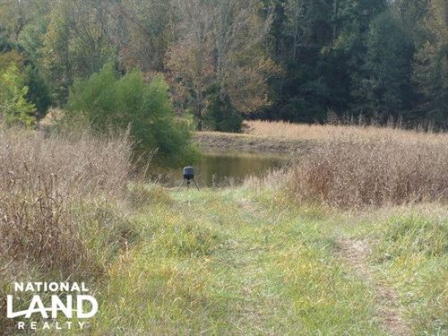 141 Acre Hunting & Recreational Tra : Newark : Independence County : Arkansas