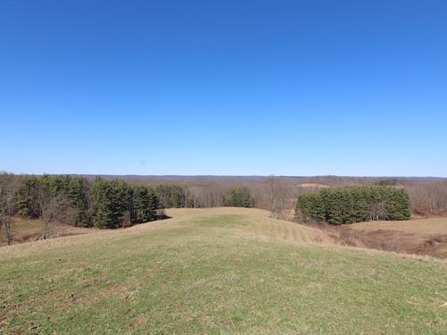 Endley Rd - 112 Acres : Cambridge : Guernsey County : Ohio