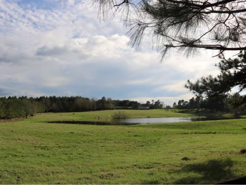 75 Acres With Home In Lamar County : Lumberton : Lamar County : Mississippi