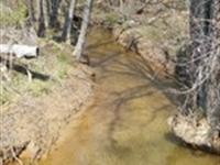 Hardwoods Creek And Mountain Views : Marble : Cherokee County : North Carolina