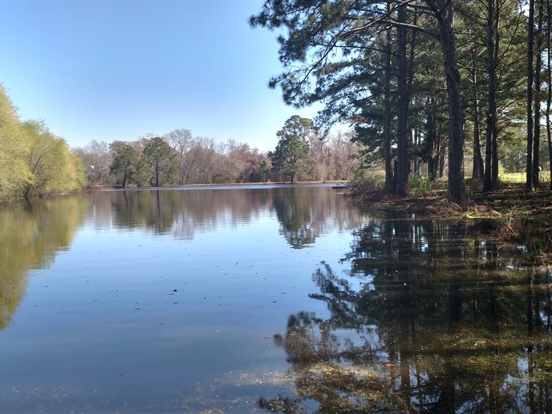 Country Home With Pond And 42 Acres : Ranch for Sale