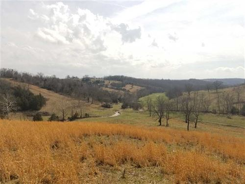 202 Acre Farm With Rolling Views : Wasola : Ozark County : Missouri