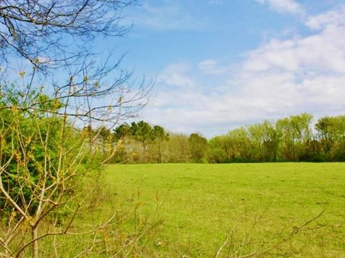59 Acres Pasture For Sale Mize Scho : Magee : Smith County : Mississippi