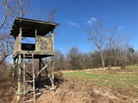 Turnkey Hunting Camp : Butler : Taylor County : Georgia