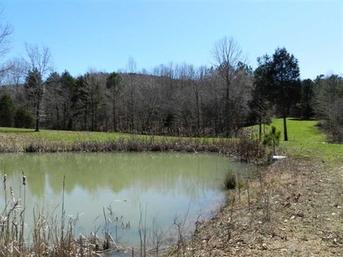 Secluded 249 Acres on Buddy Durham : Cherokee : Colbert County : Alabama