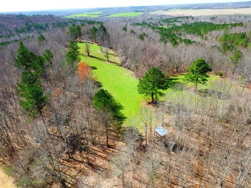 For Sale Beautiful 292 Acres Off : Cherokee : Colbert County : Alabama