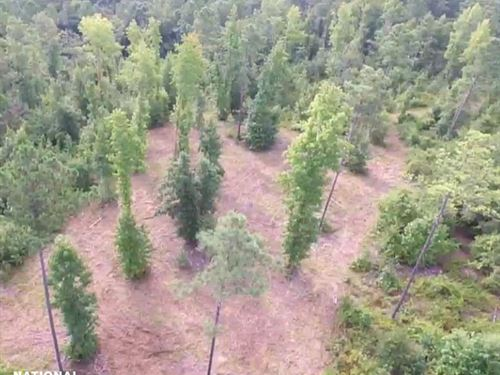 Lugoff Homesite With Acreage : Lugoff : Kershaw County : South Carolina