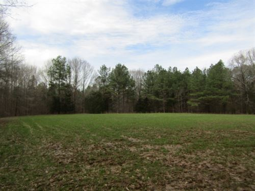 92 Acres In Lafayette County : Oxford : Lafayette County : Mississippi