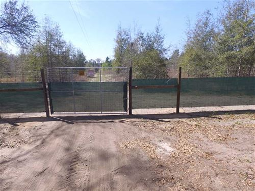 39.94 Acres of High And Dry Proper : Jennings : Hamilton County : Florida