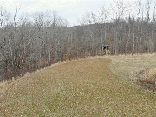 Leek Ln - 62 Acres : Cumberland : Guernsey County : Ohio