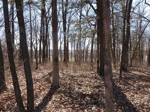 41 Acres in Hickory County Near Po : Weaubleau : Hickory County : Missouri