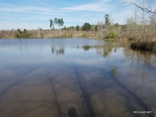 68 Ac - Hunting, Pond, Home Site Po : Marion : Union Parish : Louisiana