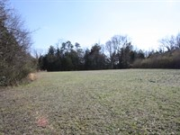 Beautiful 20.06 Acres In Hanover Va : Ashland : Hanover County : Virginia