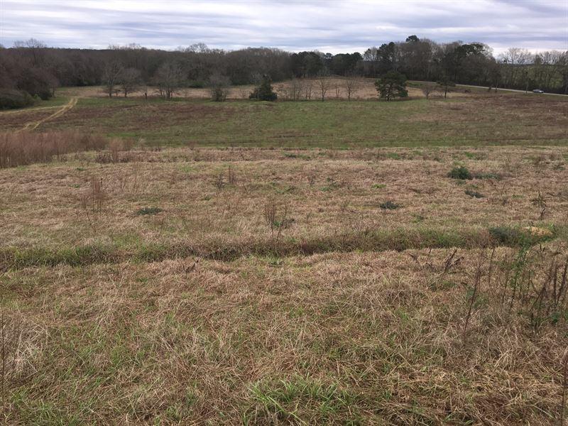 99 Acre Farm W 4 Poultry Houses Brundidge Coffee County Alabama