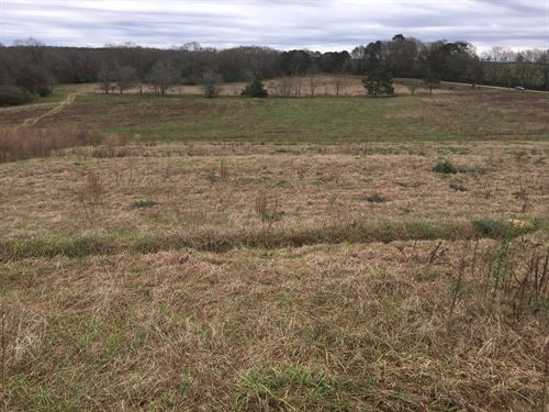 99 Acre Farm W/ 4 Poultry Houses : Brundidge : Coffee County : Alabama