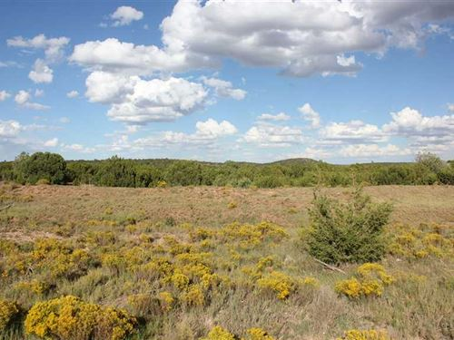 320 Acres Lincoln County, NM : Corona : Lincoln County : New Mexico