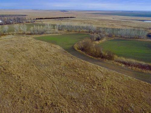 160 Acres of Hunting, Tillable : Burdett : Pawnee County : Kansas