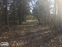 120 Timber And Recreational Acre : Batesville : Panola County : Mississippi