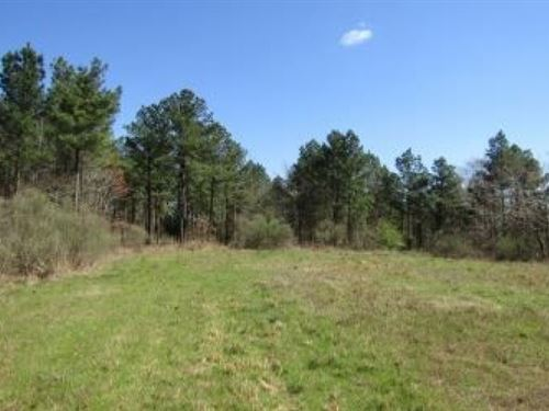 107 Acres In Attala County, Ms : Ethel : Attala County : Mississippi