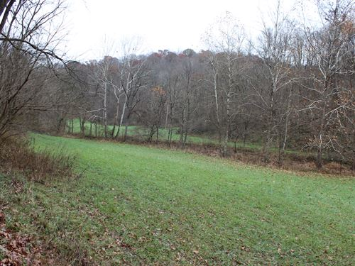 Old Camp Rd - 48 Acres : New Matamoras : Washington County : Ohio