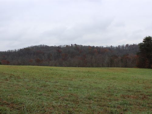 Old Camp Rd - 28 Acres : New Matamoras : Washington County : Ohio