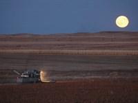 Moeller Farm And Hunt : Winner : Tripp County : South Dakota
