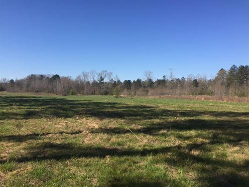Reduced-North Jasper 76Ac Farm : Monticello : Jasper County : Georgia