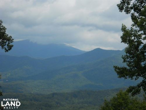 Views of Roan Mountain And Mount Mi : Bakersville : Mitchell County : North Carolina