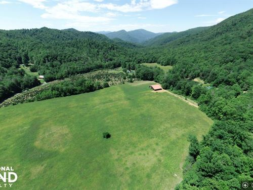 Spectacular Farmland Adjacent to Na : Green Mountain : Mitchell County : North Carolina