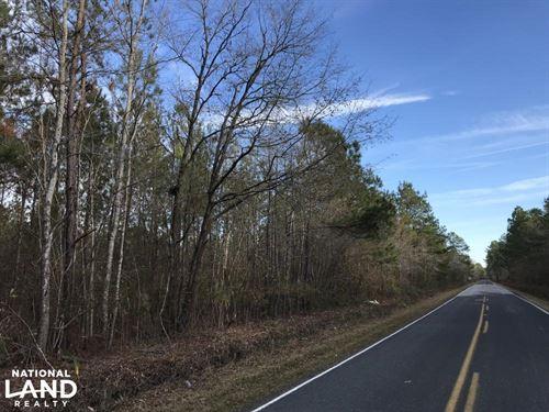 Roper Woods Whitetail : Lake City : Williamsburg County : South Carolina
