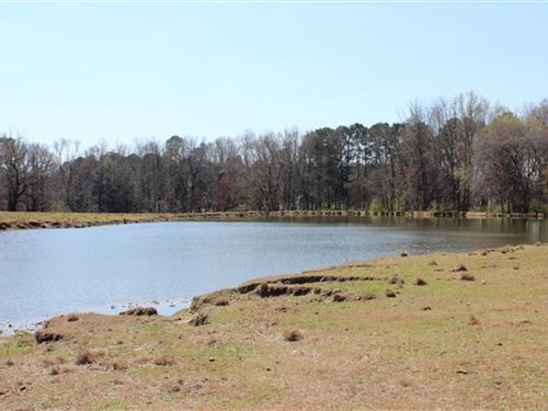 59 Acres, Chesterfield County, Sc : Chesterfield : South Carolina