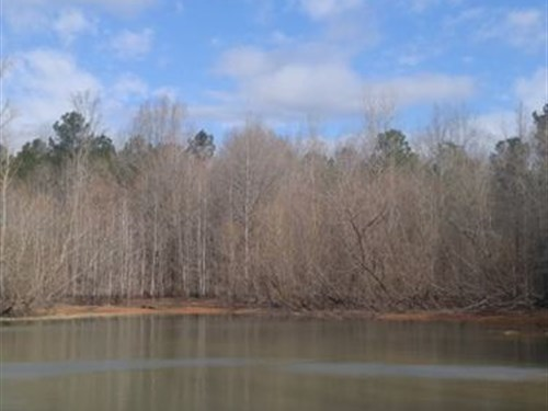 Acreage And Pond, Blythewood : Blythewood : Richland County : South Carolina