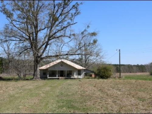 41 Acres In Leake County : Lena : Leake County : Mississippi