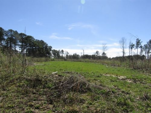 35 Acres In Franklin County, Ms : Meadville : Franklin County : Mississippi